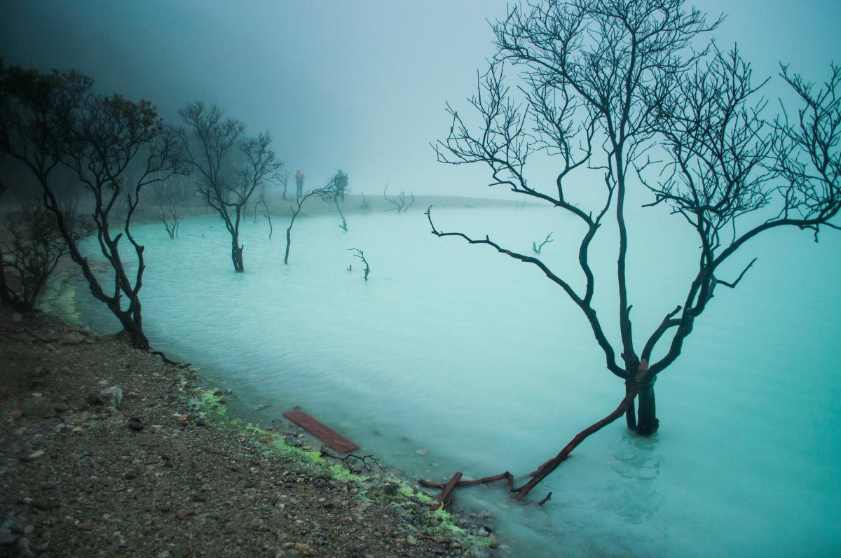 kawah putih wisata di Ciwidey